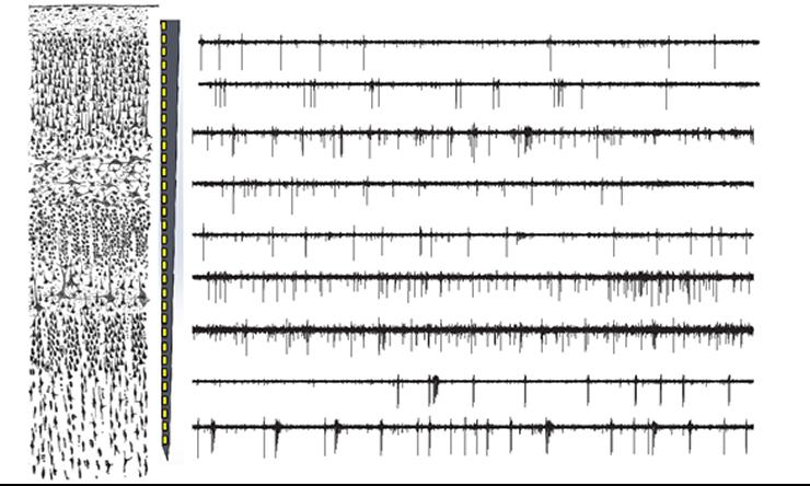 Multi-electrode recording