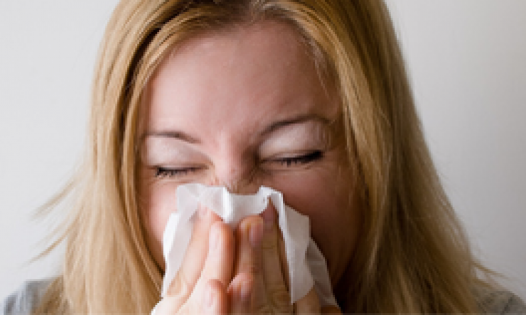 Read More About Sinus Relief