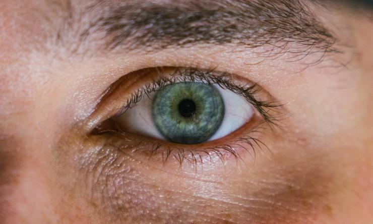 INSiGHT identifies unique retinal regulatory genes