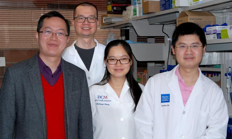 Dr. Yong Xu, Dr. Pingwen Xu, Dr. Chunmei Wang and Dr. Yanlin He.